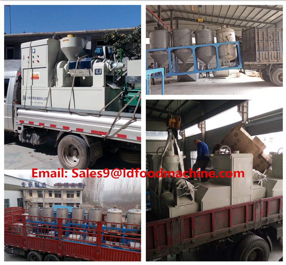 factory coconut natural oil extruder processing plant