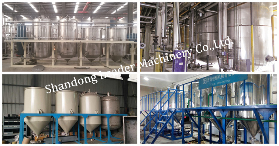 moringa seed oil extraction machine/canola oil extraction machine/oil extraction machine