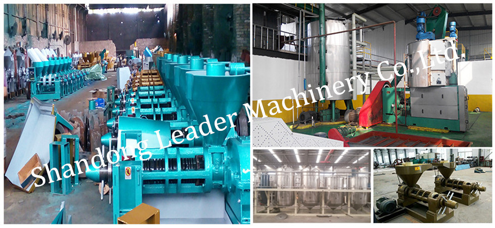 Alibaba goLDn supplier Dry copra oil solvent extraction machine production line