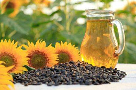 Study on extraction method of sunflower seed oil