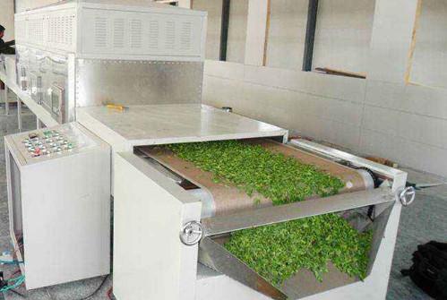 Experimental study on microwave drying of Pu erh tea