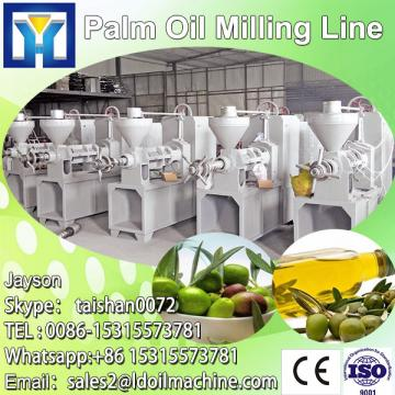 quality, professional technology oil palm processing plant