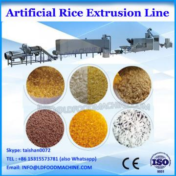 Thai long thin white artificial rice food extruding machines Jinan DG