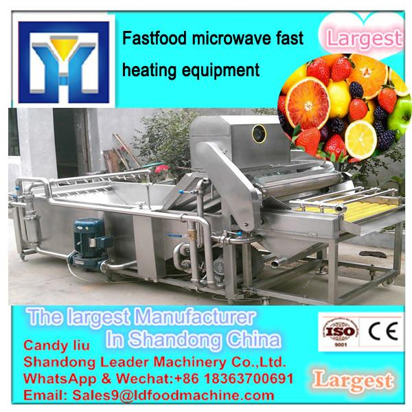 High quality moringa leaf /tea leaf microwave drying machine #1 image