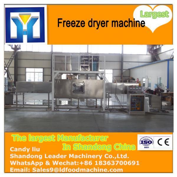 Buy Home freeze drying machine / Food freeze dryer / Mini