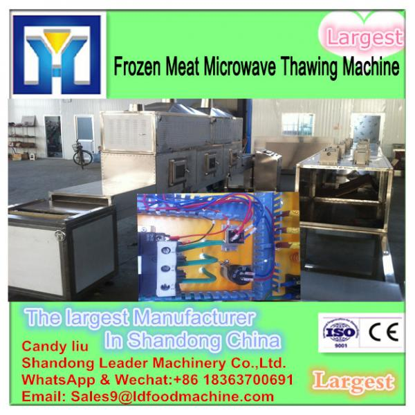 China supplier microwave thawing machine for beef #1 image