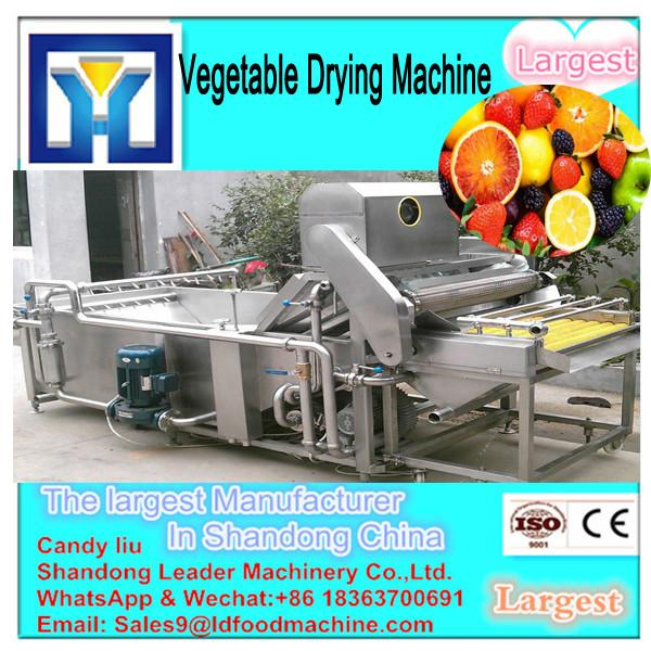 Drying Temperature Adjustable Industrial Fish Drying Machine (008617666509881) #3 image