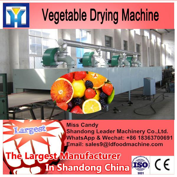 New Technology Spice Dryer Machine #2 image